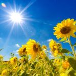 もうすぐ夏休み!夏におすすめの関東近郊のデートスポット8選☆のサムネイル画像