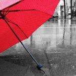 雨の日のお出かけに便利!おすすめの【折りたたみ傘ケース】10選のサムネイル画像