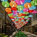 【レディースの傘ってこんなにかわいい♪シャレなものが揃ってる】のサムネイル画像