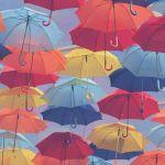 大嫌いなはずの雨が大好きになる!?こだわりの傘を選びましょうのサムネイル画像