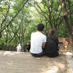 暑い夏のデートにおすすめ!!関西のデートスポットとは!?のサムネイル画像