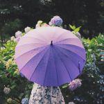 梅雨の季節だってお出かけしちゃおう!【長靴・レインシューズ】のサムネイル画像