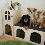 初心者必見!【犬小屋の作り方】を大公開☆大切なペットのために♡のサムネイル画像