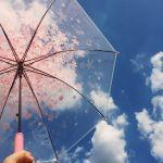 梅雨に大活躍!バッグにいつでも忍ばせておける軽量【折り畳み傘】のサムネイル画像
