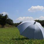 今の季節にとってもおすすめ!可愛い『おりたたみ日傘』特集♡のサムネイル画像