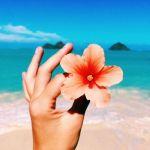 女子旅にはハワイ。ハワイを24時間たっぷりと満喫しよう!のサムネイル画像
