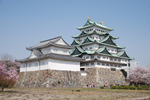 Nagoya castle tower in spring