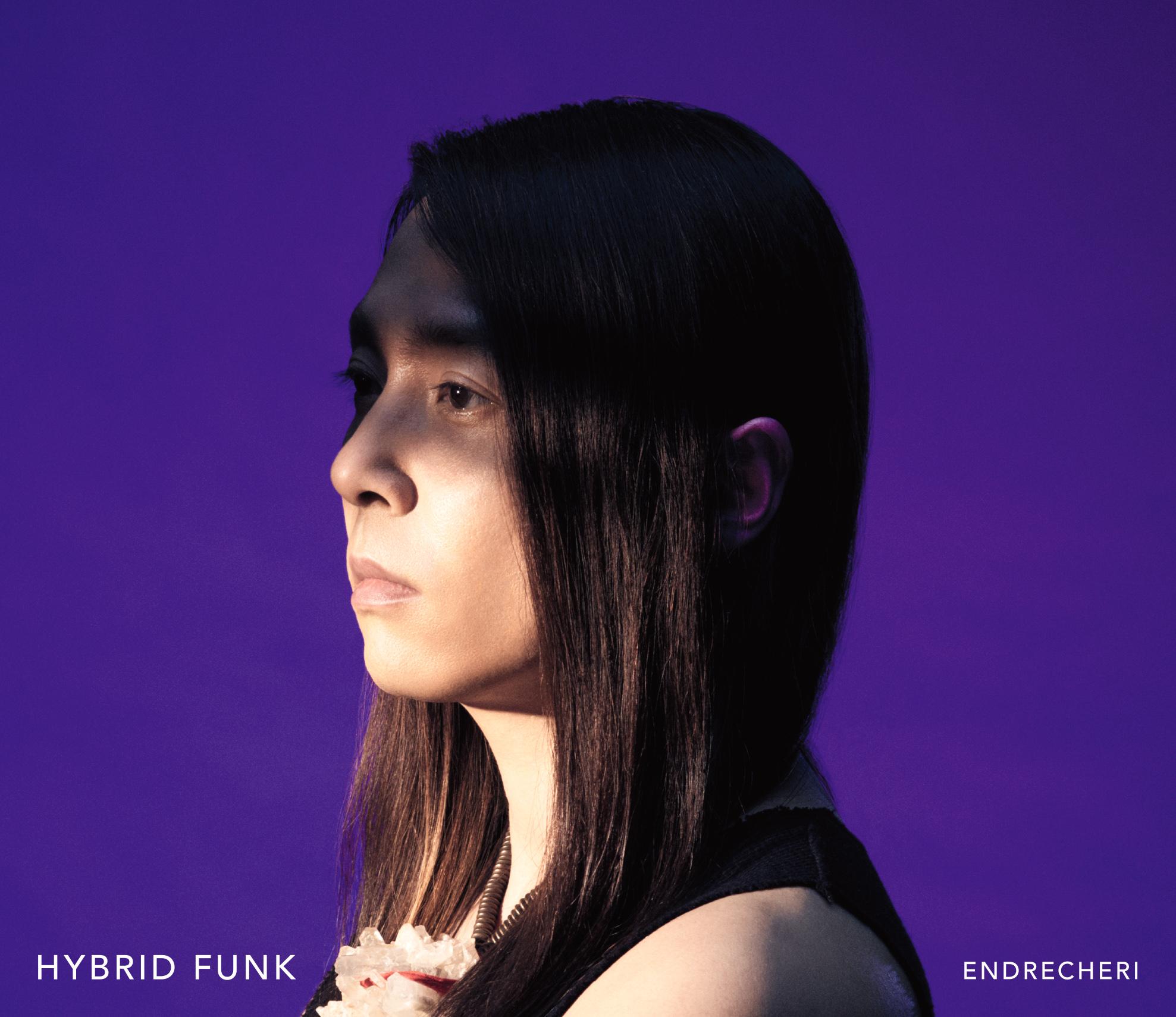 hybrid funk endrecheri