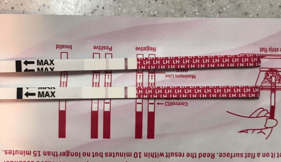 初日の排卵検査薬 Luckytest(ラッキーテスト)