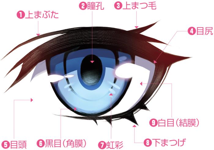イノシシ キャラクター イラスト
