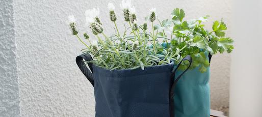 ベランダでガーデニング。Bacsacのやわらかプランターで植物をもっと自由に楽しもう