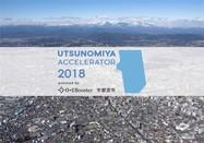 Thumb utsunomiya