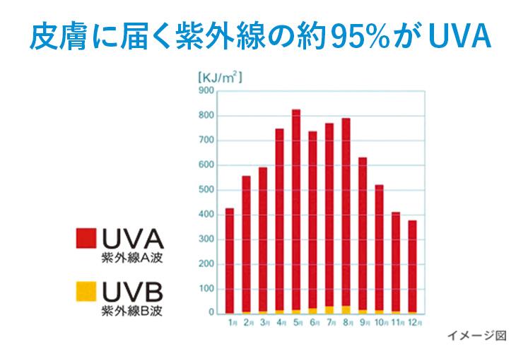 皮膚に届く紫外線の約95%がUVA