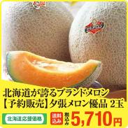 北海道が誇るブランドメロン【予約販売】夕張メロン優品 2玉