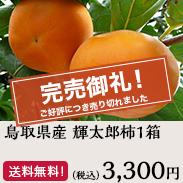 輝太郎柿1箱 鳥取県産