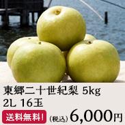 東郷二十世紀梨 5kg2L16玉
