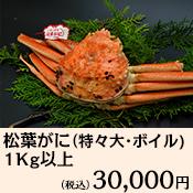 【鳥取賀露港直送】 松葉がに(特々大・ボイル)1Kg以上