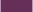 0380-Orchid-オーキッド