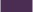 1001-Elderberry-エルダーベリー