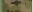 マルチカム-0968-multicam