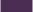エルダーベリー-1001-elderberry