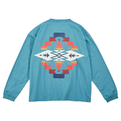 10055 Turquoise (Tucson)