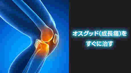 オスグッド(成長痛)を治す方法 - 天神カイロプラクティック脱成長痛講座