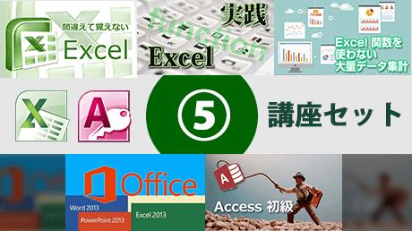 Excel 2010 & Access 2010 ビジネスITアカデミー5講座セット