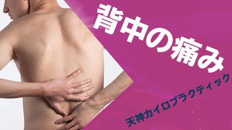 背中の痛みの治し方 - 天神カイロプラクティック背部痛解消講座