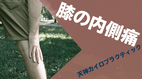 膝の内側痛解消法 - 天神カイロプラクティックの動画講座