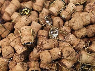 Champagne & Bourgogne♪