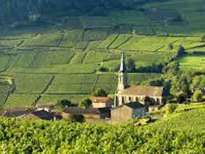 現地クルティエ(バイヤー)視点からの「フランス完全制覇の法則」