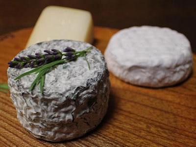 日本のチーズを楽しむ