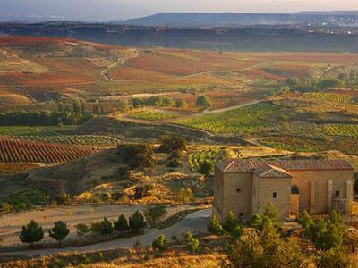 楽しむスペインワインレストラン講座   シェリーラボ 羊×シェリー   インターナショナルシェリーウィークを楽しむ