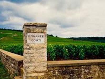 Quintessence of Burgundy  ブルゴーニュの精髄Ⅱ