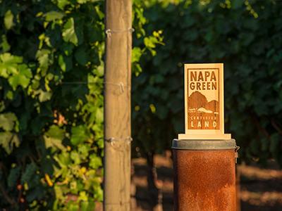 【N.V.V. 生産者来日セミナー】ナパヴァレーの環境にやさしいワイン