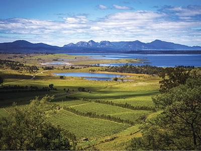 タスマニア ワイン マスタークラス 2019 〜 Tasmania. It's Cool.