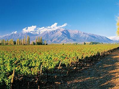 コンチャ・イ・トロ社生産者セミナー「チリファインワインの現在と未来」