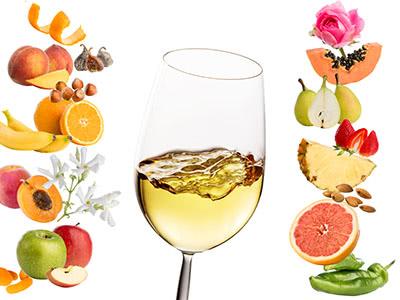 ワインの香りを探る~「アロマパレットで遊ぶ」をナビゲーターに~