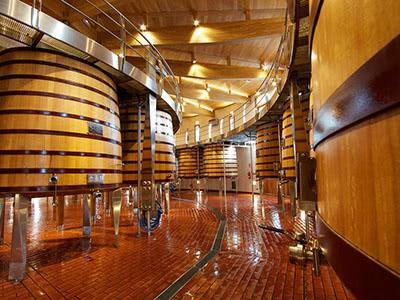 2020年を祝う特別企画 イベリア半島のブドウ品種 ドゥエロ&ドウロ