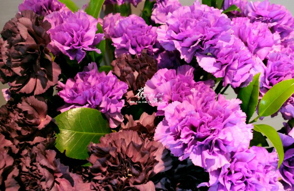 【Mother's Day Flowers】