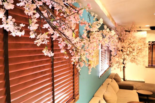 コロナと花粉が襲い来る今、『室内花見』が推し!快適な空間でお花見を。|TIME SHARING|タイムシェアリング |スペースマネジメント|あどばる|adval|SHARING