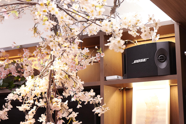 室内で桜を楽しむ。今年もやります、室内花見!|TIME SHARING|タイムシェアリング |スペースマネジメント|あどばる|adval|SHARING