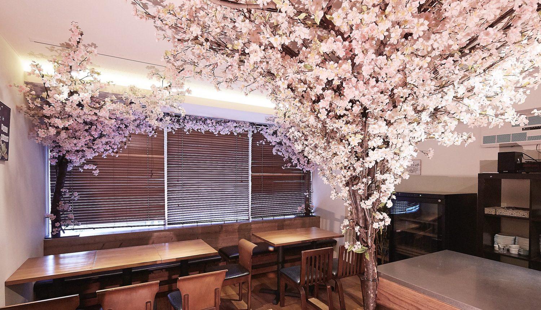 【3/15~4/30 期間限定】<br>゜*✧人気パーティースペースを桜の装飾で彩ります✧*。<br>【インドア花見】