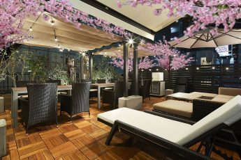 Lounge-R TERRACE 渋谷 | 【夜桜】3/15~4/30の期間限定で、有料オプションの「屋上テラス」にインドア花見装飾を行います!※写真は合成イメージ写真です。実際はこれよりもお花の数が多く豪華になります。
