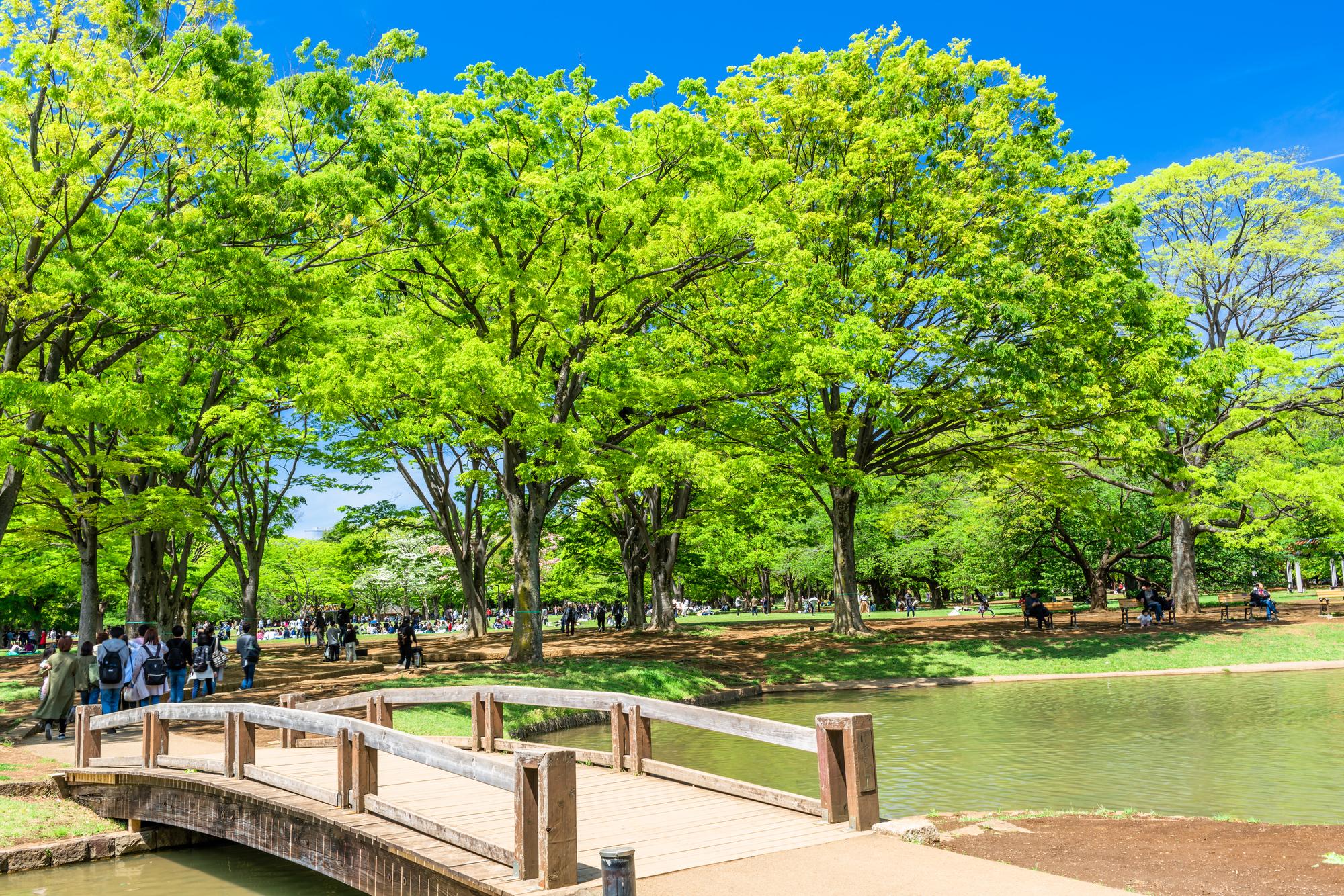 便利すぎる街「代々木」の魅力に迫る!代々木のおすすめレンタルスペース TIME SHARING タイムシェアリング  スペースマネジメント あどばる adval SHARING