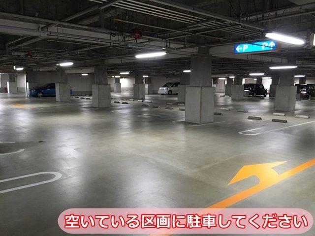 【道順3】空いている区画に駐車してください。