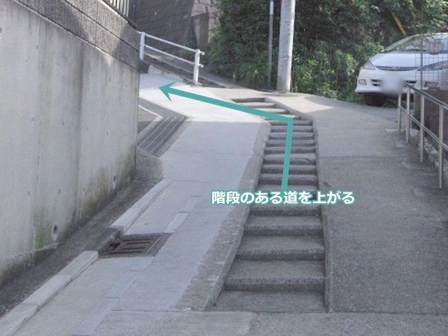 【道順3】真ん中が、階段になっている道を上がります。
