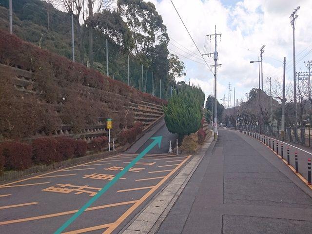 【駐車場までの道順3】写真の坂を進んでください