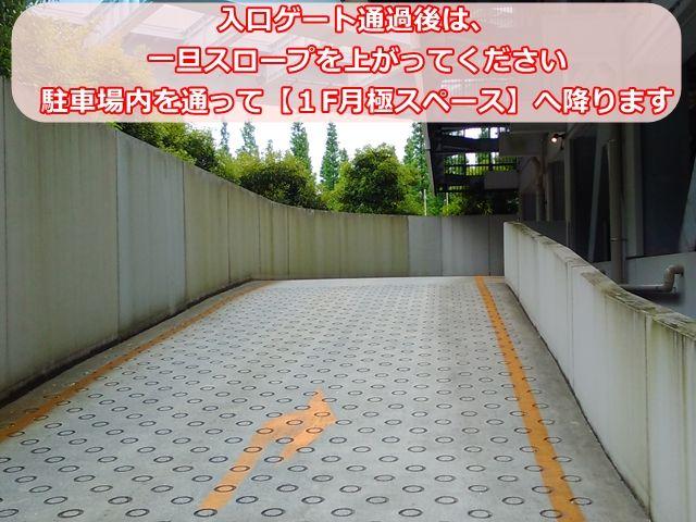 【手順3】入口ゲート通過後、一旦スロープを上がってください。駐車場内を通って「1F月極スペース」へ降ります。
